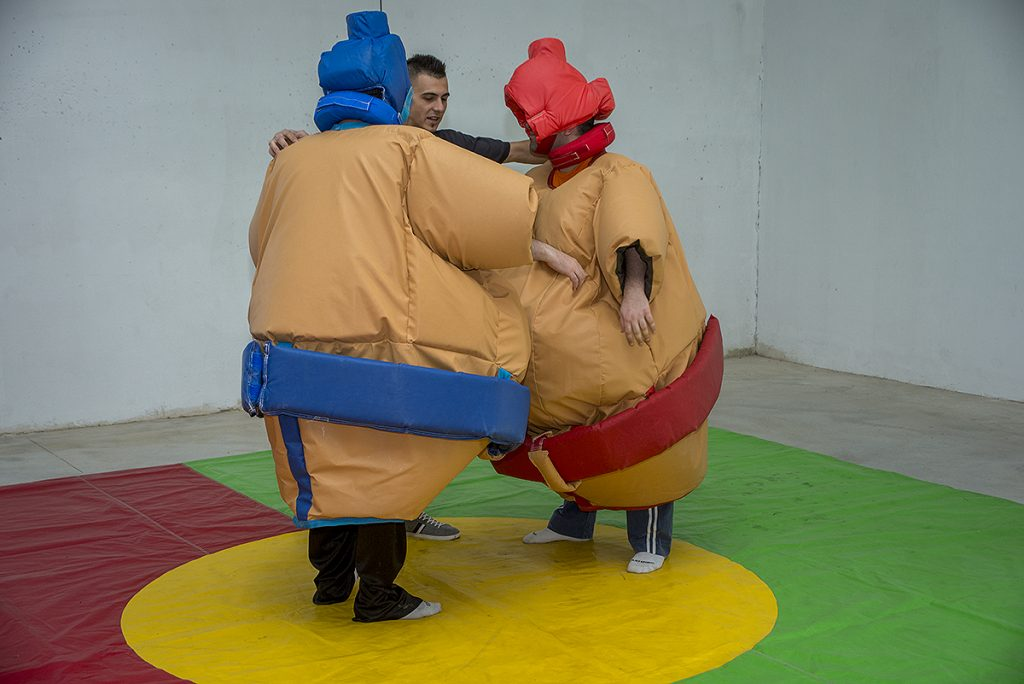 lucha de sumo